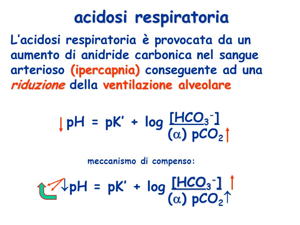 pH = pK' + log [HCO3-] pH = pK' + log [HCO3-] acidosi respiratoria